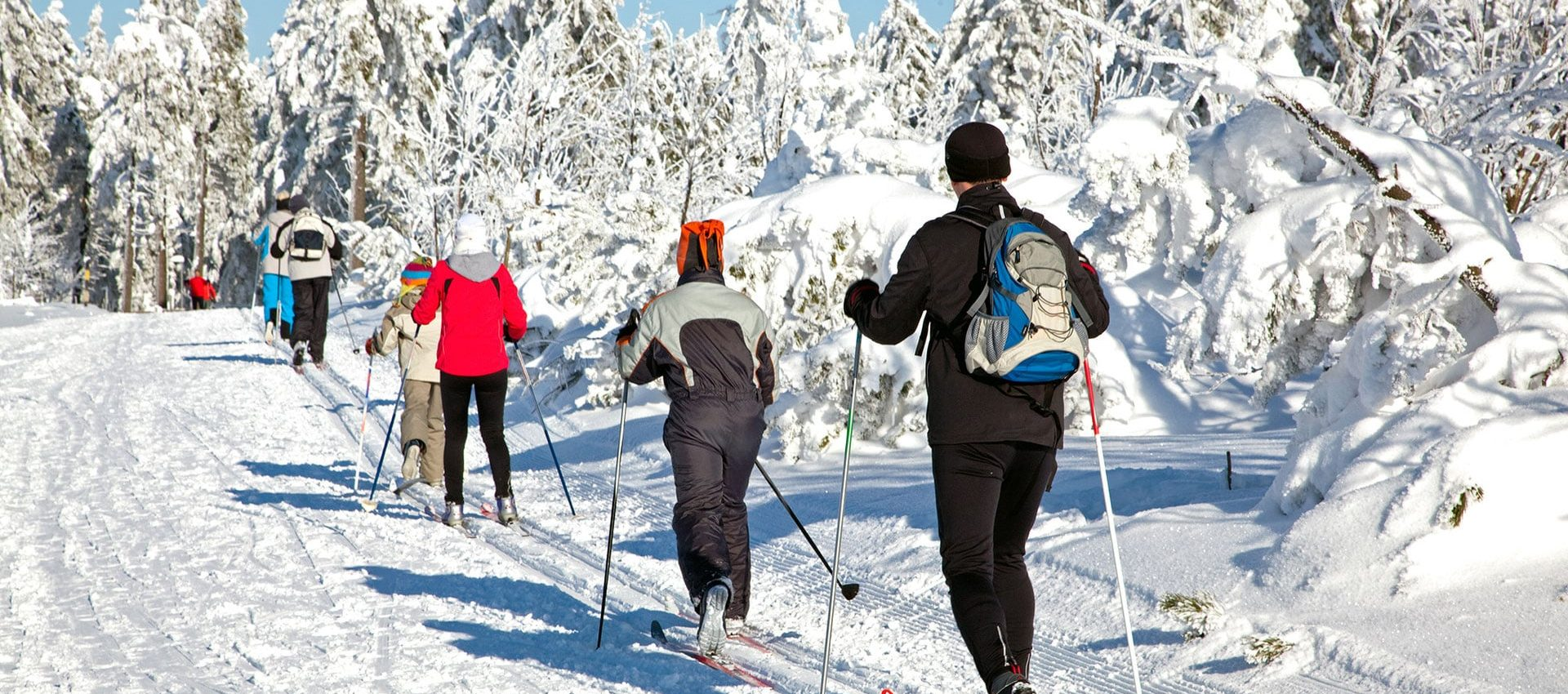 Des skieurs à fond