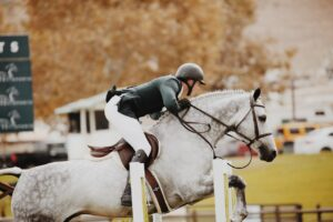 saut d'obstacle en concours d'équitation